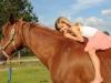 horsefarm06
